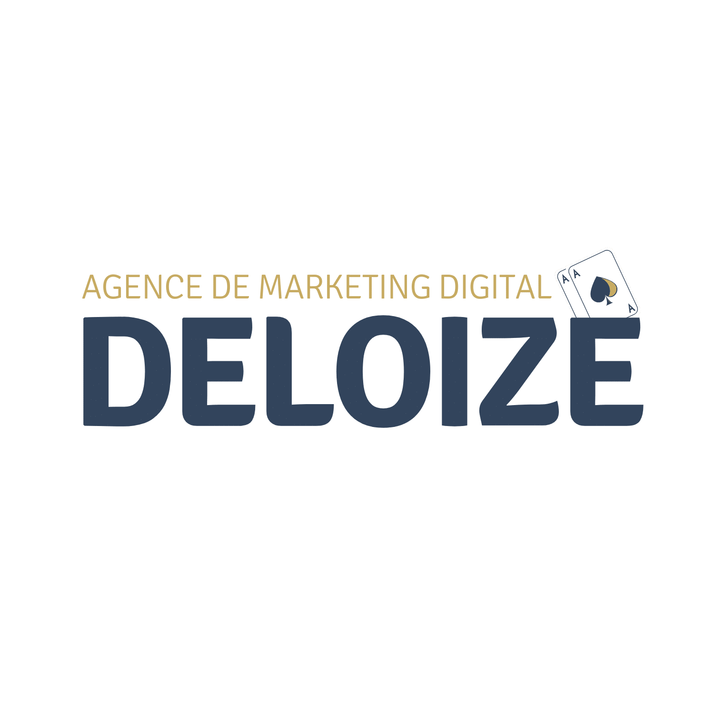 deloize-logo-transparent